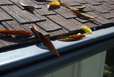 No Leaf Gutter Guard Image
